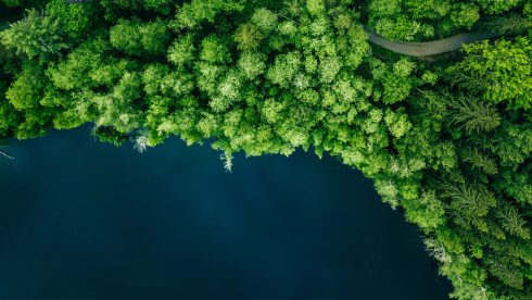 Sky view of Swedish landscape: at the junction of forest and water