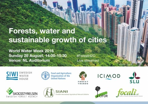 postcard_-_forests_water_and_sustainable_growth_of_cities_page_1